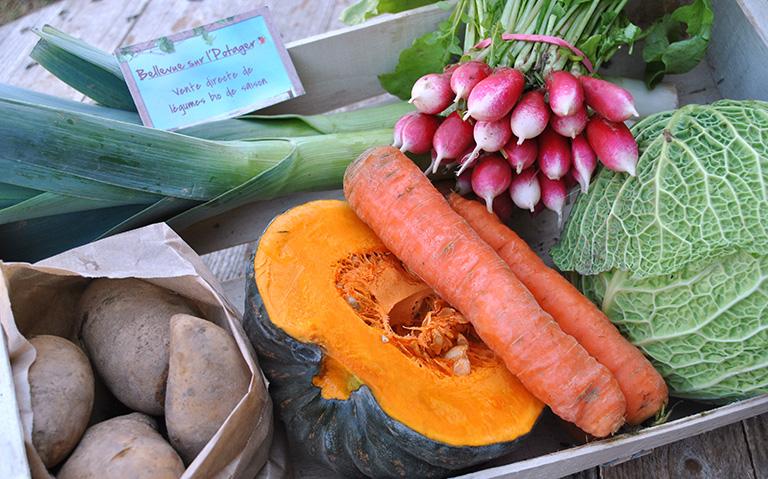 Les légumes et fruits - nos produits