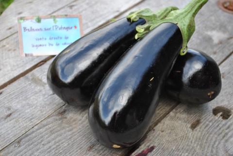 Boulgour aux aubergines