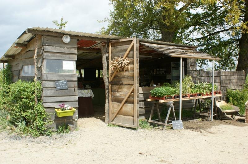 La Cabane d'accueil 2010